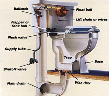 schema wc diagramme